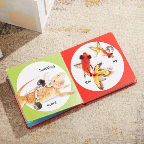 First birthday gifts - Poke-a-Dot Pet Families Book by Melissa & Doug