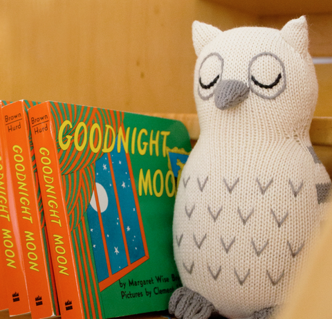 Owl rattle organic baby toy on shelf with Goodnight Moon books