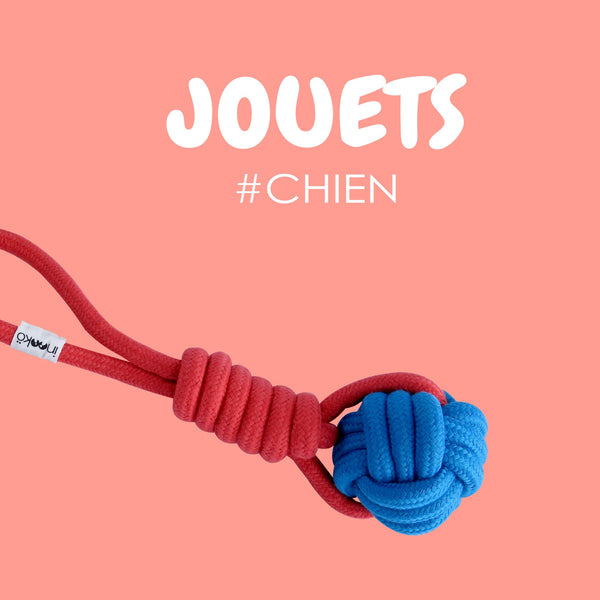 Chiens - Jouets
