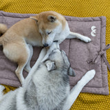 inooko - mat blanket for small and medium dog