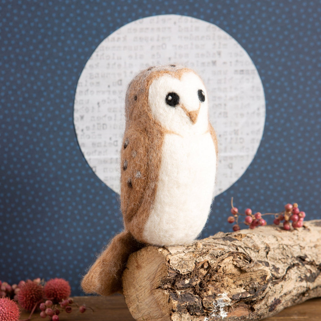 Barn Owl Craft Kit