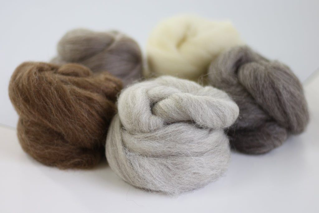 British Breeds Wool Bundle No.1
