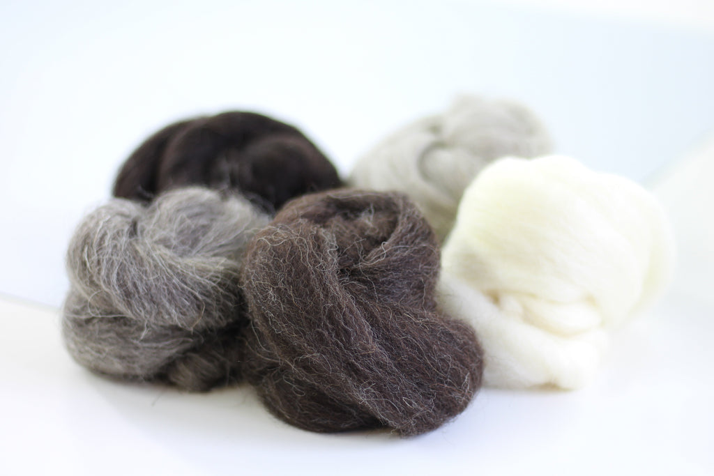 British Breeds Wool Bundle No.3