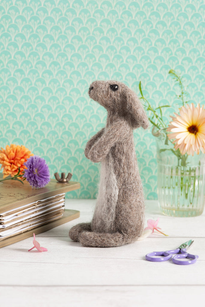 Needle Felting Rabbit Kit