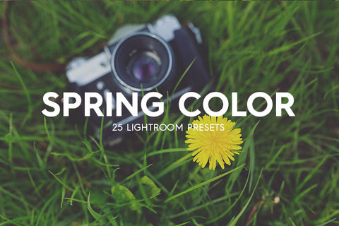 Lightroom Presets - 25 Spring Color Lightroom Presets