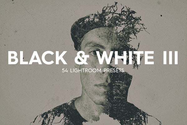 54 B&W Lightroom Presets Vol. III - Premium Lightroom Presets - Dreams & Spark
