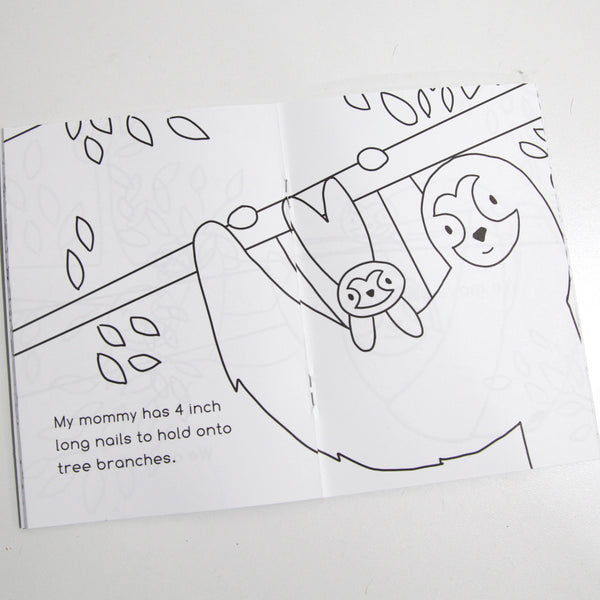 Sloth Baby Coloring Book