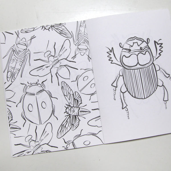 Creepy Crawly Insects Coloring Book