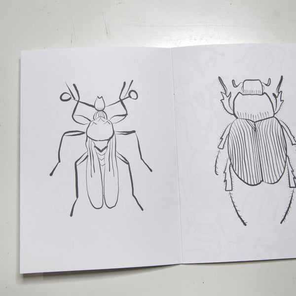 Creepy Crawly Insects Coloring Book - FINAL SALE