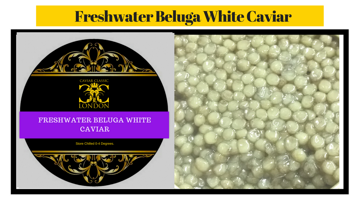 We have a limited amount of one of the rarest Caviar's available. Over 30% off.