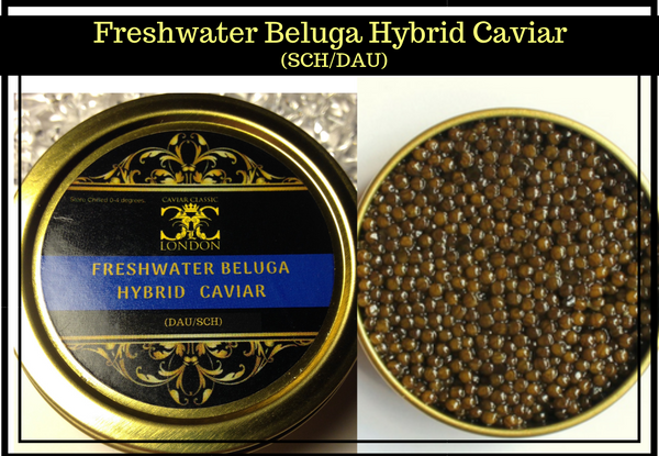 Classic Trio of Caviar 3 x (30-125gr). FREE tin of Superior Freshw. Beluga ends .31.03 - Caviar Classic London