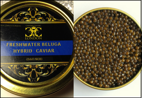 Freshwater Beluga Quartet of Caviar. 4 x 10-250 gr. 25% off in May. - Caviar Classic London