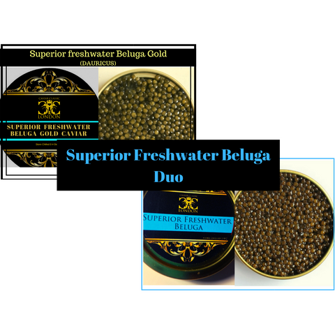 Superior Freshwater Beluga Duo. 30-250 gr.Very popular duo. - Caviar Classic London