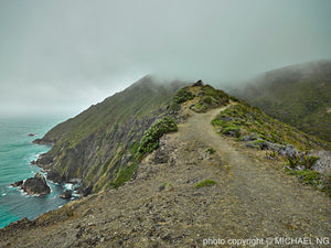 Cape Reinga in the Mist - New Zealand