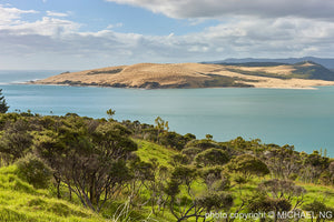 Hokianga 2 New Zealand