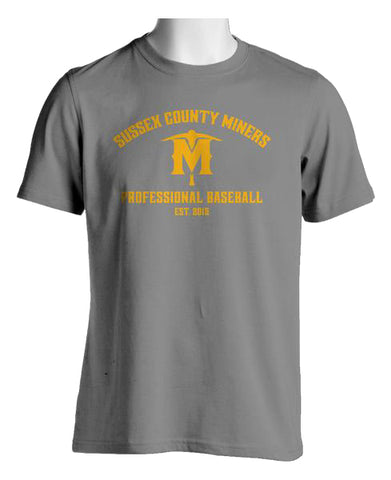 Established Pro Ball T-Shirt (Grey)