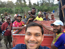 Papua New Guinea Sigri Estate AA Peaberry - Indonesian Single Origin