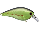 Lucky Craft Squarebill Crankbaits - 1.5 / 2.5