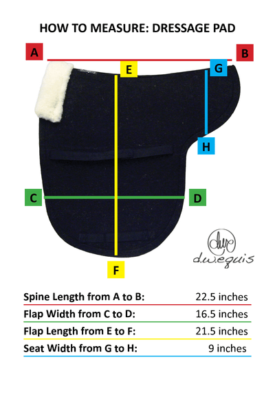 "S""cool""ing Pads - Dressage"