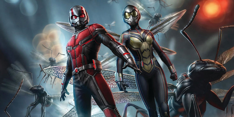 Ant-Man and the Wasp: Top 5 Theories