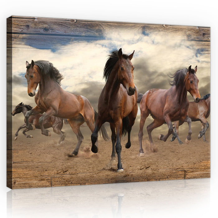CANVAS WALL ART PRINTS HORSES