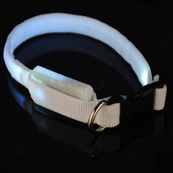 Glowing / Flashing LED French Bulldog Collar