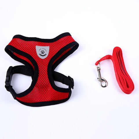 Small dog Harness with leash