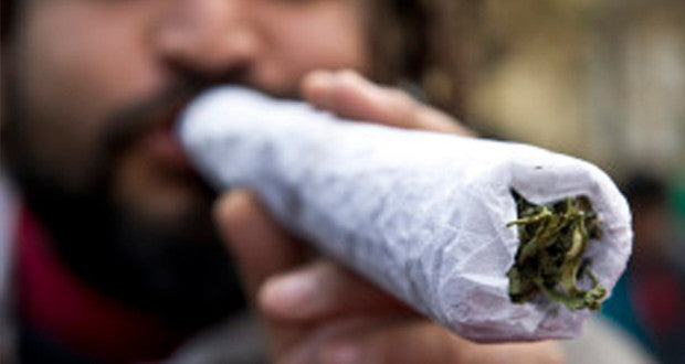 The Chronic truth about Marijuana: Is cannabis a problem?