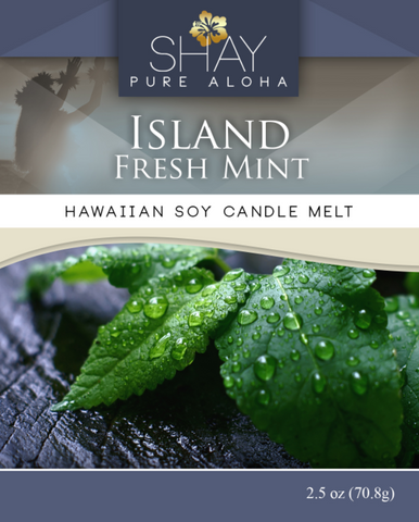 Island Fresh Mint Wickless Soy Candle Melts - Shay Pure Aloha Inc