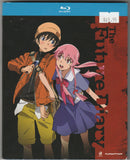 Future Diary Complete Series Blu-ray Disc