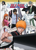 Bleach: Ichigo Group Ready Wall Scroll