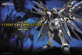Gundam: Strike Freedom Gundam PG Model