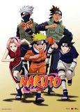 Naruto: Team 7 & Iruka Wall Scroll