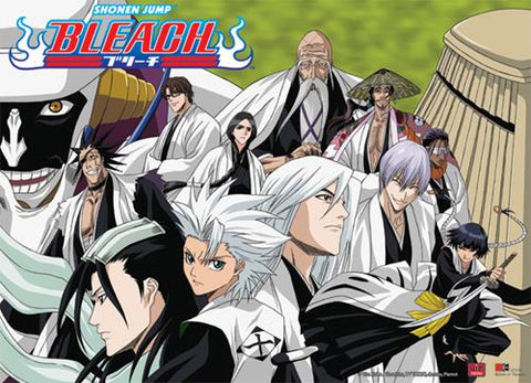 Bleach: Gotei 13 Captains Wall Scroll