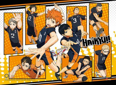 Haikyu!!: Group Collage High-End Wall Scroll