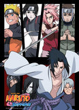 Naruto Shippuden: Group Panel Wall Scroll
