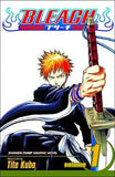 Bleach: Volume 1 (Manga)