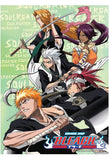 Bleach: Shinigami Group Wall Scroll