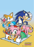 Sonic the Hedgehog: Beach Time Wall Scroll