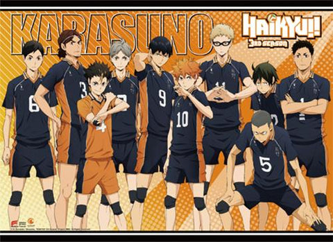 Haikyu!!: S3 Karasuno Group Wall Scroll
