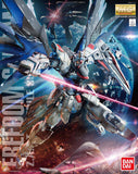 Gundam: Freedom Gundam MG Model