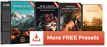 FREE and Premium Lightroom Presets