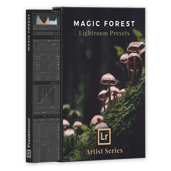 Magic Forest – Lightroom Presets (Artist Series) | Presetbase