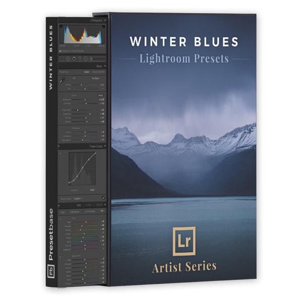 Winter Blues – Lightroom Presets (Artist Series) | Presetbase