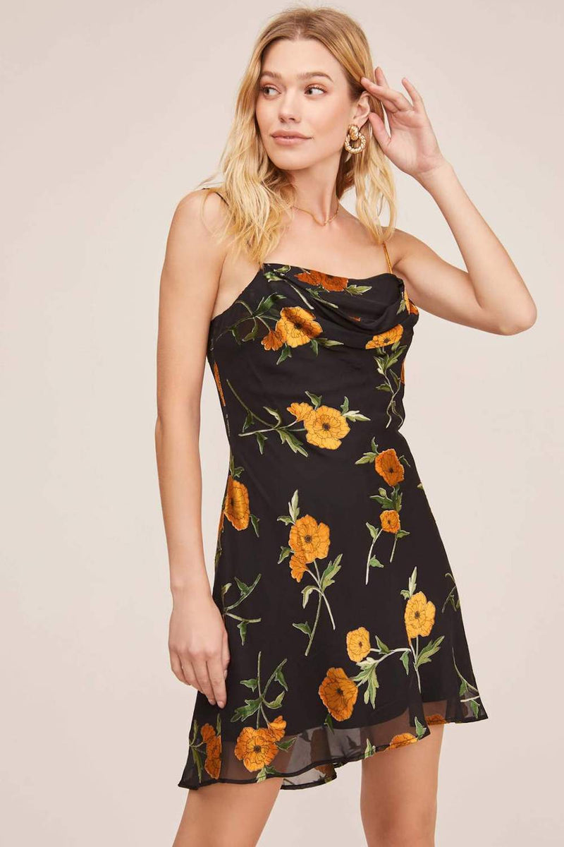 ASTR The Label Lark Dress Orange Blossom Floral