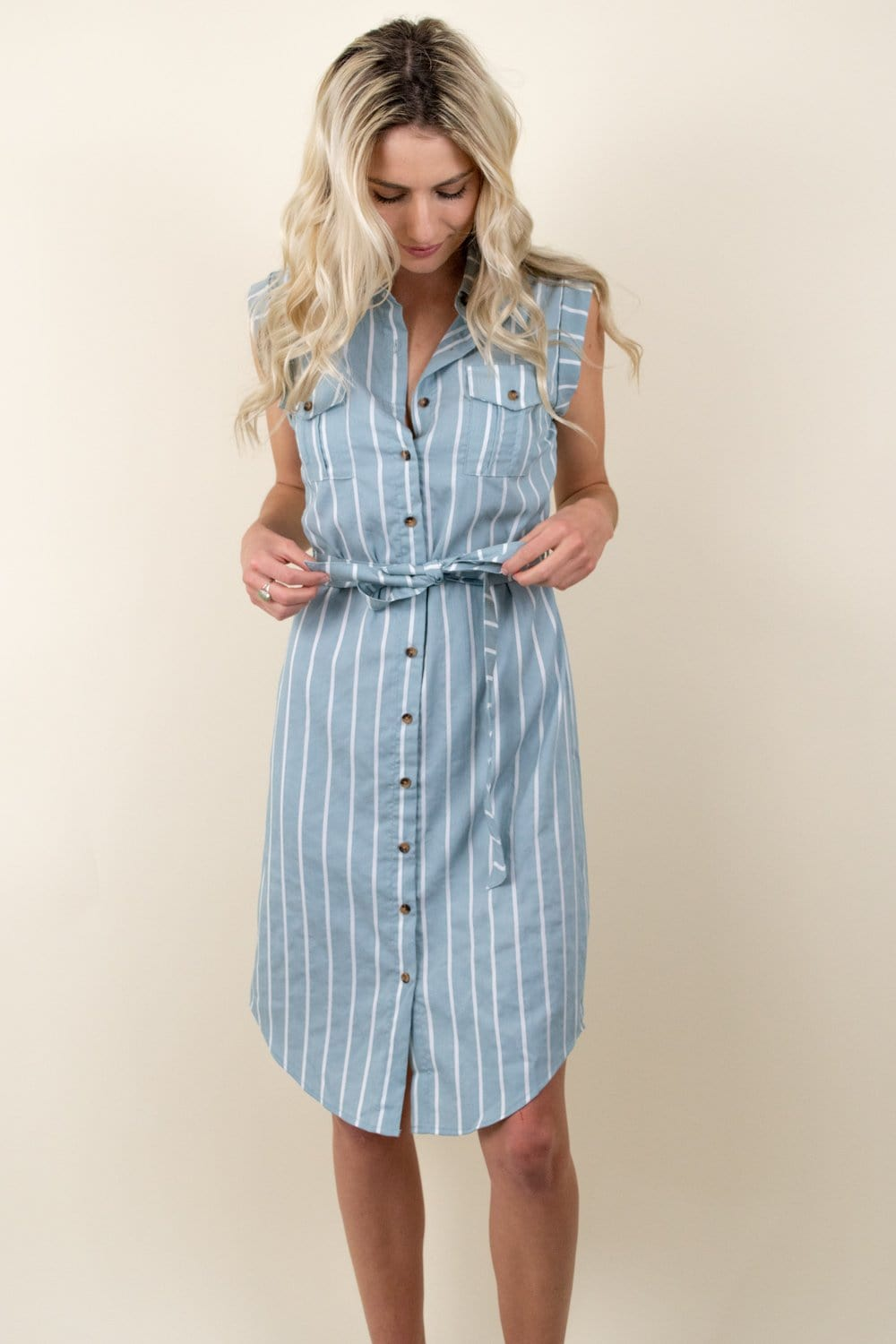 Bishop + Young Striped Button Front Dress Mist