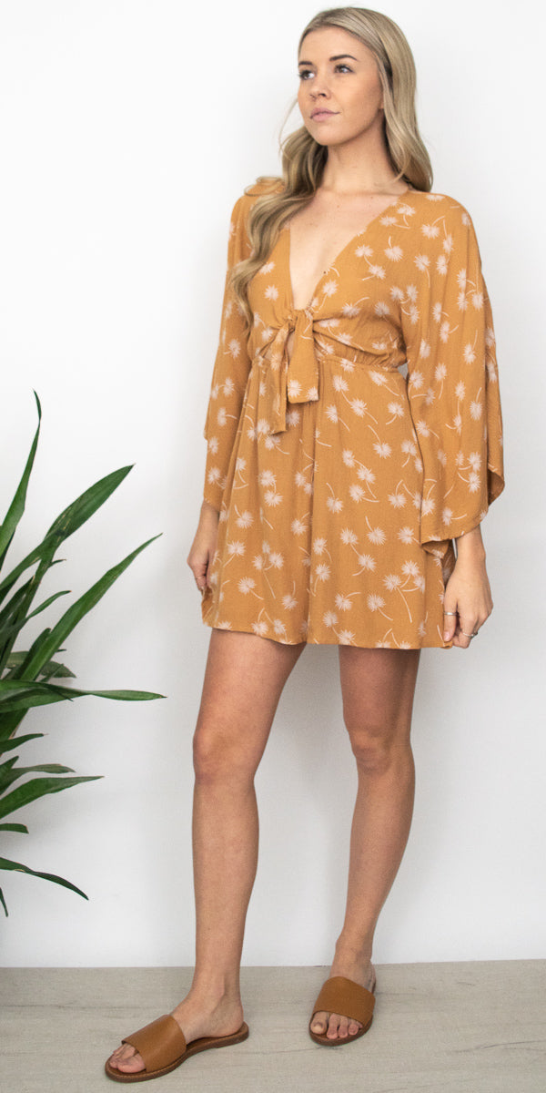 Amuse Society Clementina Dress in Rum