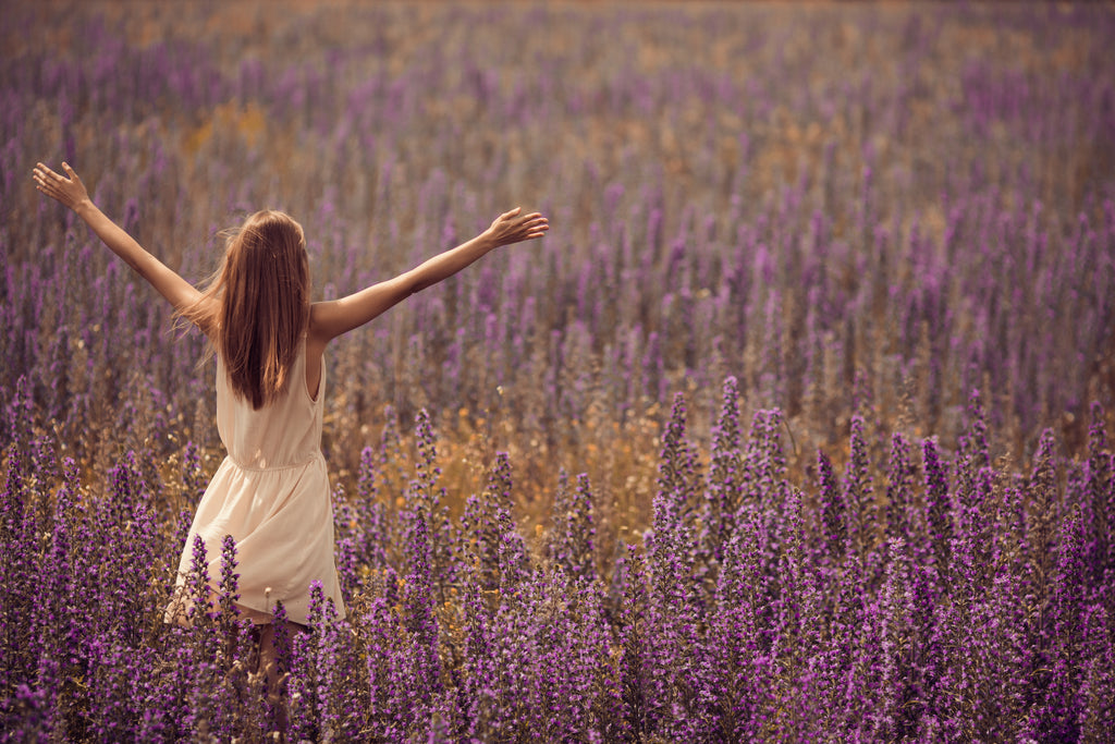 Indulge Yourself Lavender Farms in Spring | MEVEI Luxury essential oils