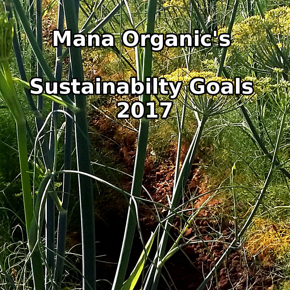 Mana's Five Sustainability Goals for 2017