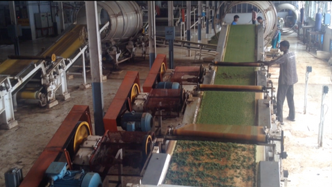 Indian tea factory in operation